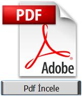 PDF DÖKÜMAN İNCELE